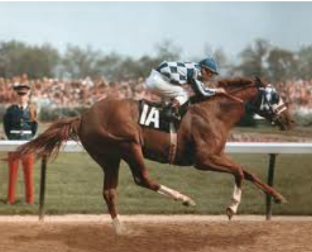 http://www.paulickreport.com/news/bloodstock/secretariat-leads-noms-for-canadian-horse-racing-hall-of-fame/