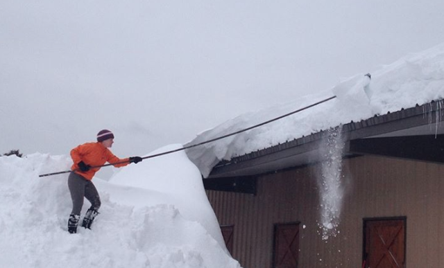 Danielle McNamara clears snow from the barn roof at Dry Water Farm in Stoughton, Massachusetts, before it collapsed Sunday afternoon. Photo via Dry Water Farm's Facebook page.