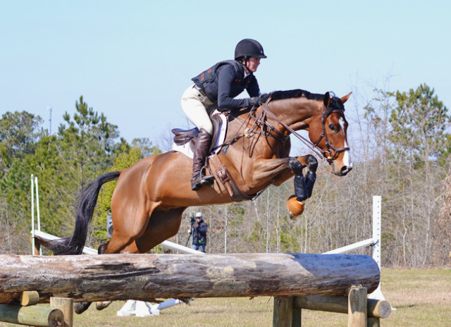 This trakehner jumped beautifully for the most part. Photo by Jenni Autry.