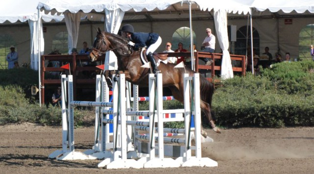 Andrea Baxter and Indy 500 go double clear in the CIC3* show jumping. Photo by Stephanie Nicora