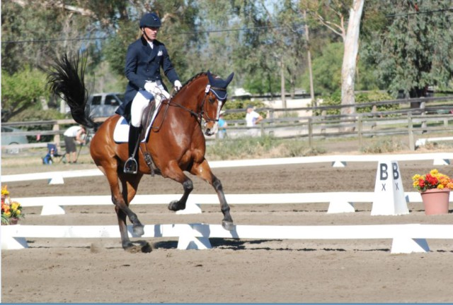 Matt Brown and BCF Belicoso make dressage look fun. Photo by Stephanie Nicora.