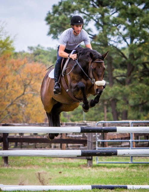 Andrew McConnon working with a CANTER horse. Photo courtesy of Allie Conrad.