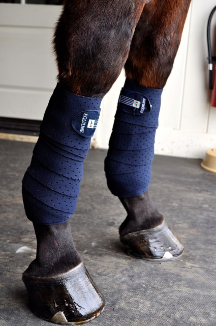 The Equiline Grip Bandages come in white, blue, brown or black, and look pretty stylish when applied. Photo by Kate Samuels.