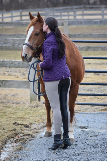 The first time (and every time since) that I've pulled on the Free-Flex breeches, I marvel at the comfort. The best description that I've heard is that they have yoga-pant like comfort...because they sure do - Photo by Lorraine Peachey