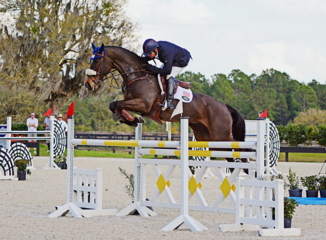 Phillip Dutton and Mighty Nice at the Eventing Prix Invitational. Photo by Jenni Autry.