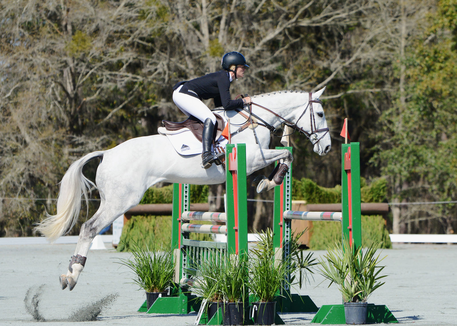 Who Jumped It Best? Red Hills CIC* Edition | Eventing ...