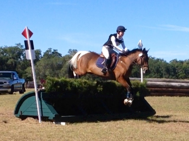 Maggie and Toby competing in Novice at Ocala Horse Properties Winter I HT. Photo courtesy of Maggie Gilbert.