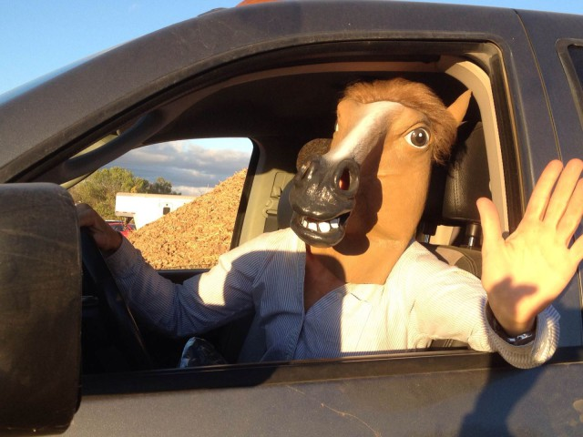 "Annie Desmond arrives at Twin Rivers to give new meaning to ""Horse Driving"". Photo courtesy Annie Desmond."
