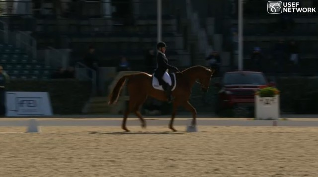 Screenshot courtesy of USEF Network.