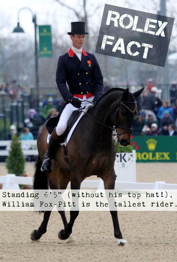 William Fox-Pitt and Bay My Hero. Photo by Jenni Autry.