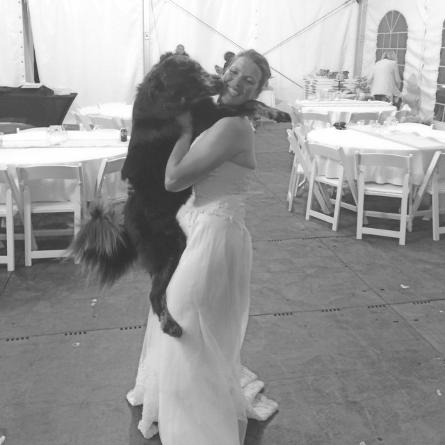 Last year's top dog, Jesse, celebrating Ellen Doughty-Hume's wedding. Photo from Summer Rhone and Angie Mitchell.