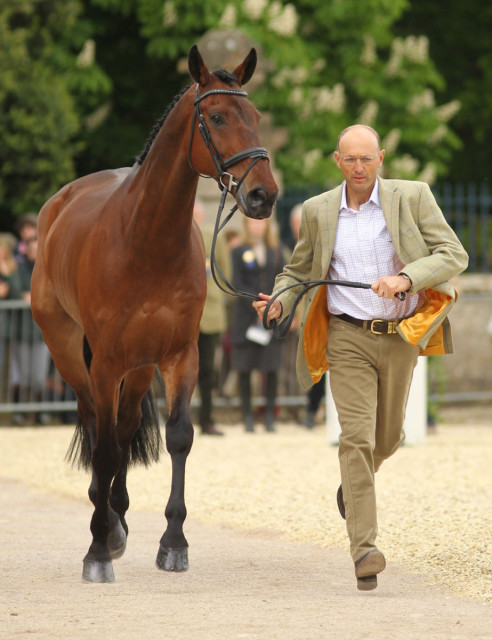 Bill Levett and Shannondale Titan. Photo courtesy of Fiona Scott-Maxwell.