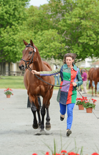 Ashley Johnson and Tactical Maneuver. Photo by Jenni Autry.
