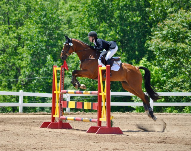 Morgan and Twizzel pulled the final rail to drop to third place in the CCI*. Photo by Kate Samuels.