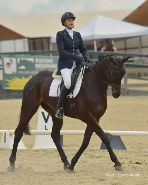 Frankie Thieriot Stutes and Chatwin, leaders after dressage in the Woodside Preliminary Challenge Horse Division.