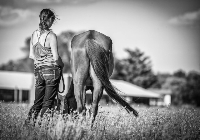 Hope the Wonderhorse with Rachel Medley. Photo courtesy of Allie Conrad.