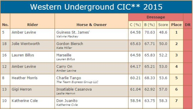 CIC 2 star scores dressage
