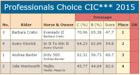 CIC 3 star scores dressage