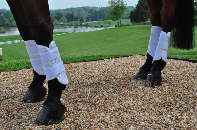 Professional's Choice now offers a snazzy Pro Performance XC Boot. Photo by Kate Samuels.