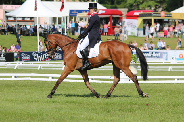 Tina Cook and Star Witness at Bramham CCI3* Photo by Samantha Clark