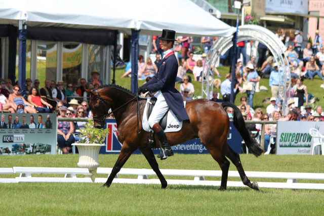 William Fox-Pitt and Fernhill Pimms