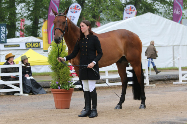 Caroline Martin and Quantum Solace pass the Final Horse Inspection at Bramham CCI3*. Photo by Samantha Clark.