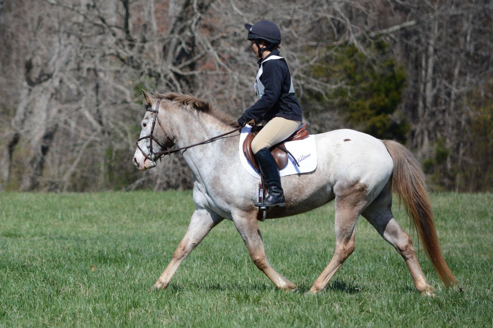 57d803f0a4a My Pony s Sunblock