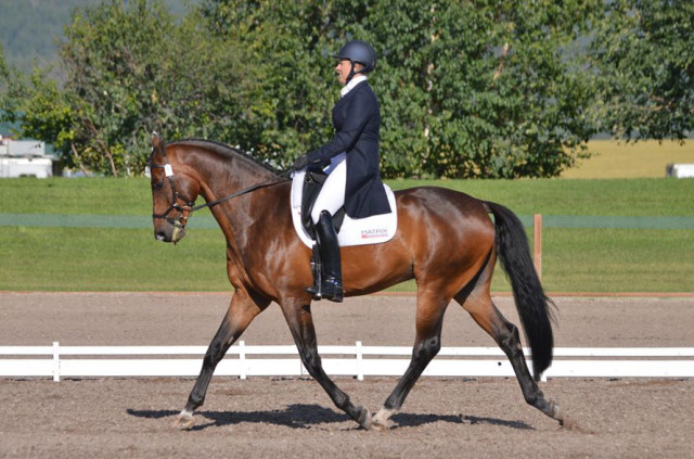 Auburn Excell Brady and Royal Lux. Photo by Sally Spickard.