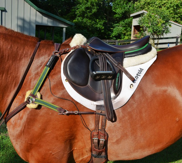 The KER ClockIt system is easy to apply to your horse and seamlessly fits into your tack without being obtrusive. Photo by Kate Samuels.