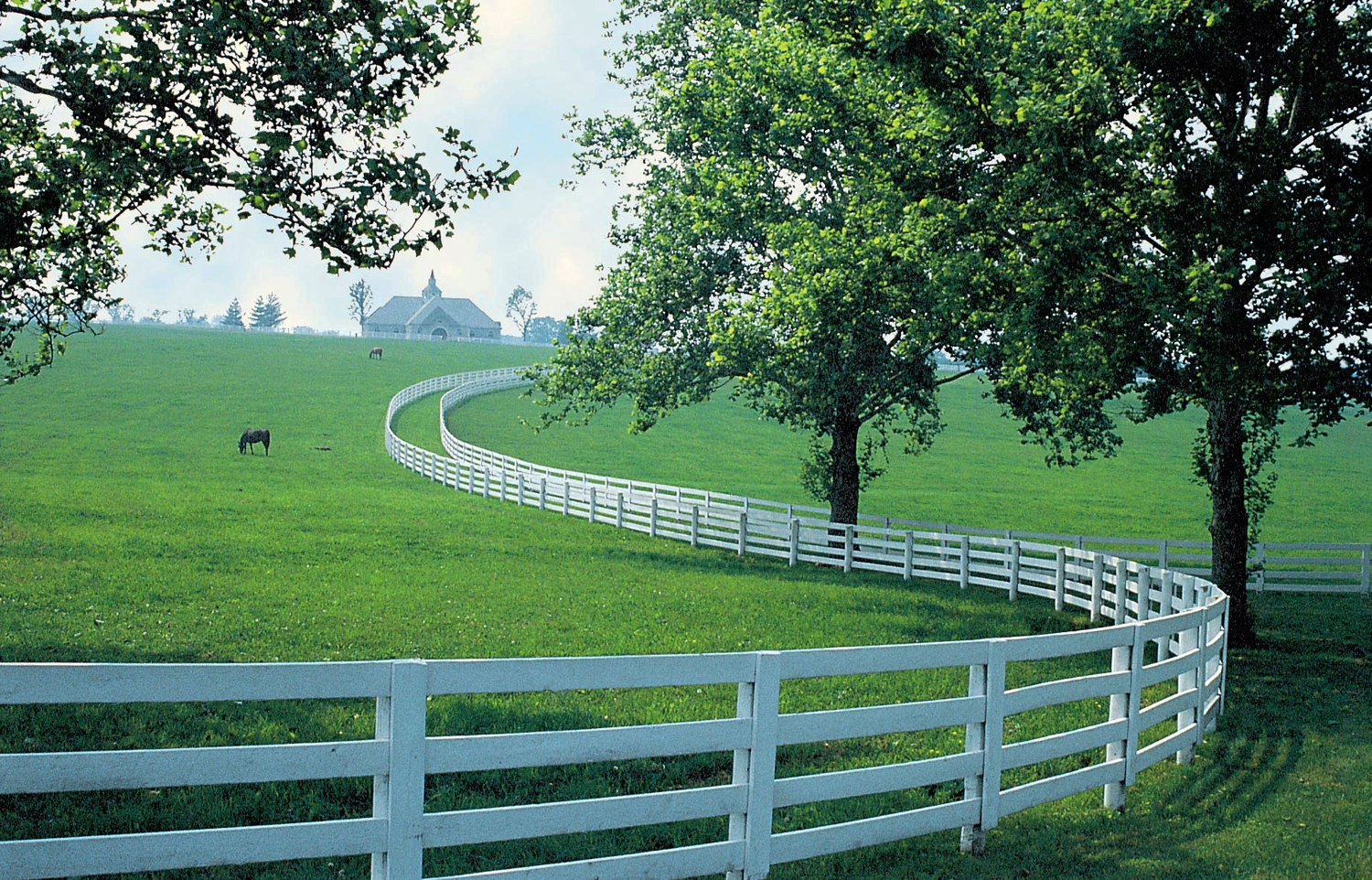 Kentucky Horse Park to Paint Iconic Fencing Black | Eventing Nation