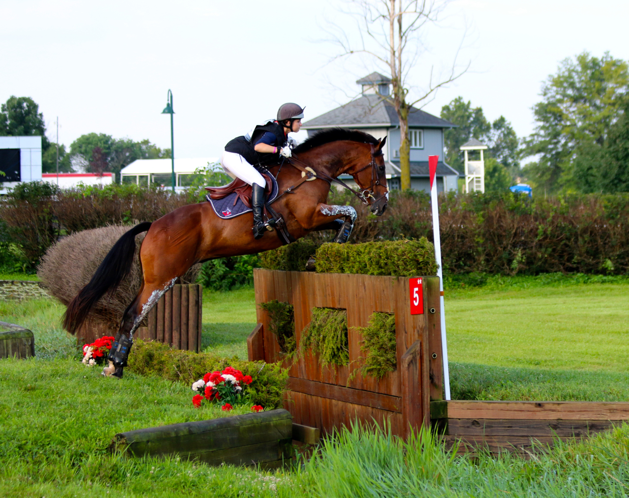 Paige Pence and Class Action jump clear round the CCI** XC for Area VIII at NAJYRC this year. Photo by Samantha Clark.