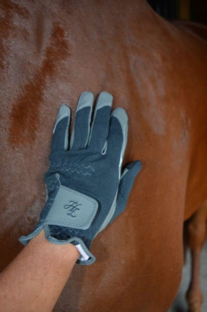 Horze Shona Touch-Screen Riding Gloves are very durable, and very practical. Photo by Kate Samuels.