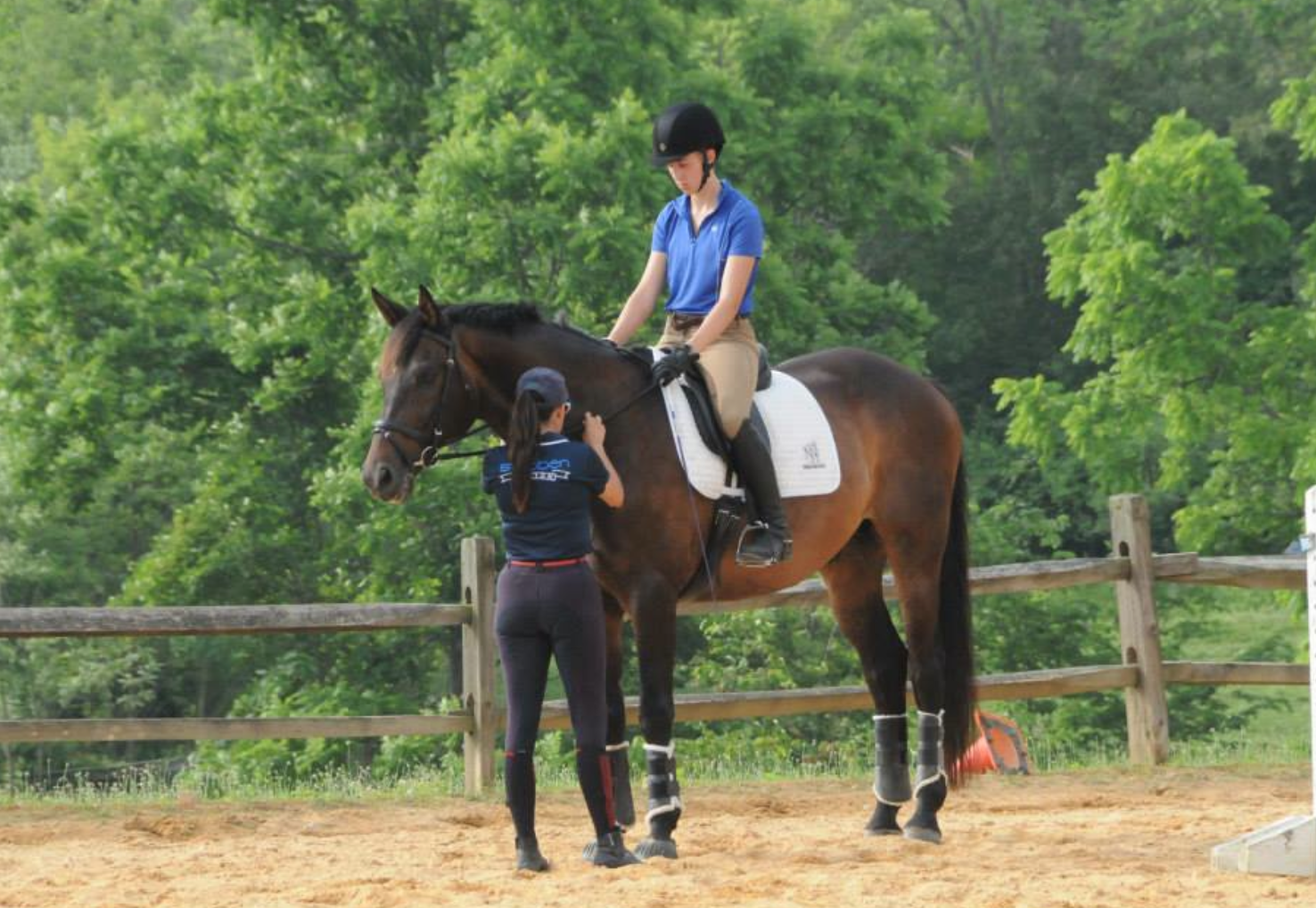Kate Chadderton helps members learn how to train their horses to make improvements. Photo by Gillian Warner.