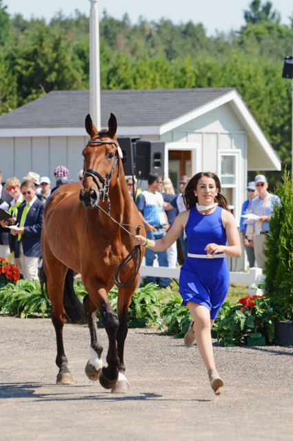 Lauren Billys (PUR) and Castle Larchfield Purdy. Photo by Jenni Autry.