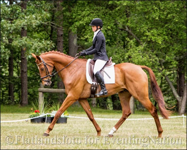Anna Loschiavo and Spartacus Q won the Senior Open Novice B division. Photo by Joan Davis/Flatlandsfoto.