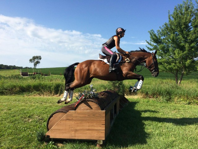 One of Catalpa's many gorgeous XC jumps. Schooling success on day two!