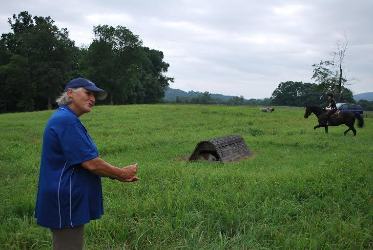 Phyllis Dawson explains the half-halt. Photo by Erin McCormick.
