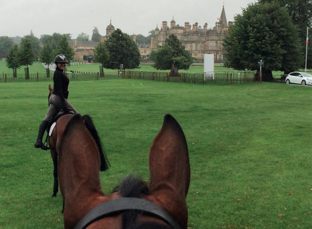 Looking at Burghley House (and Laine Ashker and Anthony Patch) through Luckaun Quality's ears. Photo by Tim Bourke.