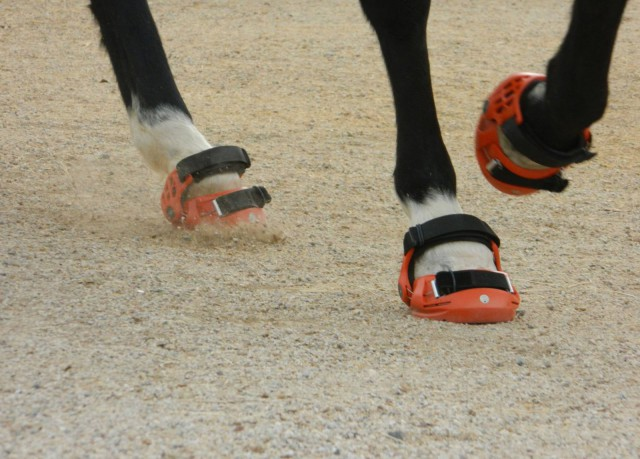 We may start seeing more protective hoof boots at events. Photo courtesy of Renegade Hoof Boots.