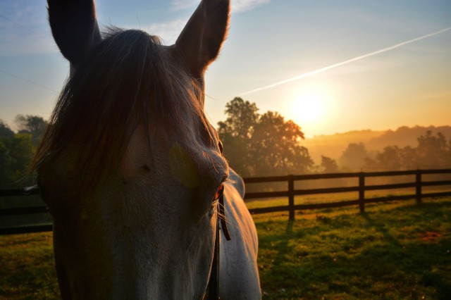 My favorite type of morning view. Photo by Kate Samuels.