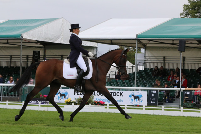 Laine Ashker and her OTTB Anthony Patch on the eve of Land Rover Burghley cross country day. Photo by Samantha Clark