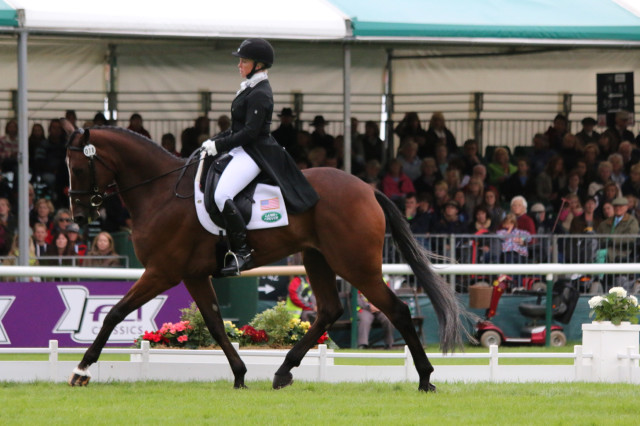 Colleen Rutledge and Covert Rights in the dressage phase at the Land Rover Burghley Horse Trials 2015. Photo by Samantha Clark.