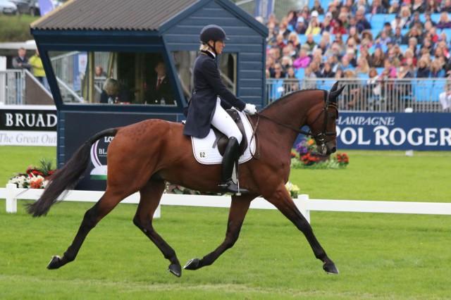 Ingrid Klimke and Horseware Hale Bob