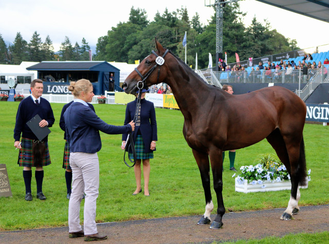 Izzy Taylor and Guy Avis' KBIS Briarlands Matilda lie 3rd going into show-jumping Blair Castle European Championships