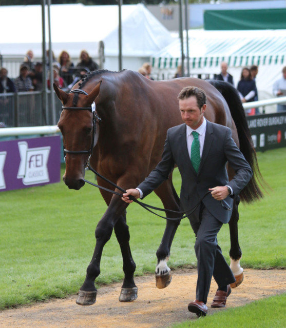 Tim Bourke and Luckaun Quality are accepted at the Land Rover Burghley First Horse Inspection. Photo by Samantha Clark