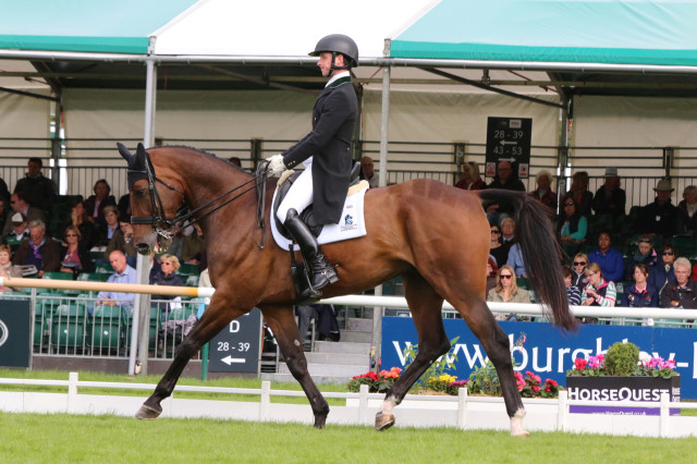 Tim Bourke and Luckaun Quality during their Land Rover Burghley dressage test Photo by Samantha Clark