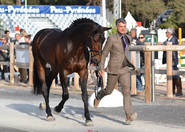 Karim Florent Laghouag and Entebb de Hus. Photo by Leslie Wylie.