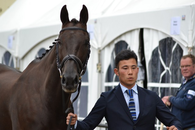 Ryuzo Kitajima and Just Chocolate, representing Japan at Boekelo. Photo by Leslie Wylie.