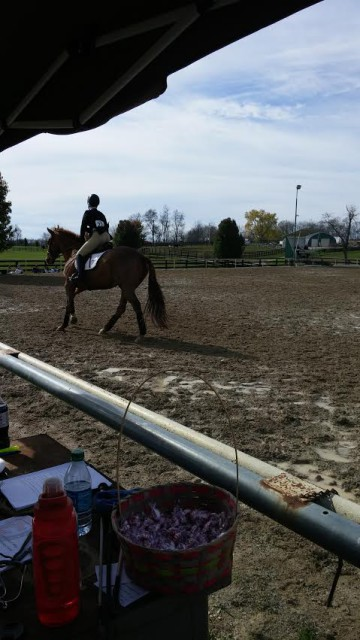 Norman's IHSA debut with a college rider aboard.