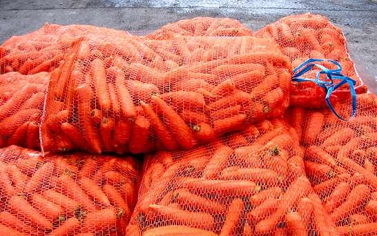 Bag of carrots, anyone? Photo from sarniaguineapigrescue.weebly.com.